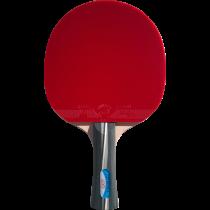 Tischtennisschläger 2040