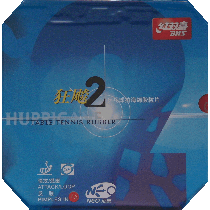 table tennis rubber DHS Neo Hurricane 2