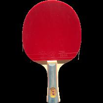 tabletennis racket 1040